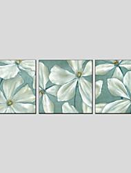 Ölgemälde Blume Stil Canvas-Material mit gestreckten Rahmen bereit, hängen Größe 70 * 70 * 3pcs