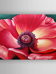 Oil Painting Red Flower Hand Painted Canvas with Stretched Framed