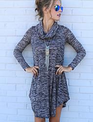 Women's New Casaul Turtleeck Long Sleeve Loose Irregular Dress