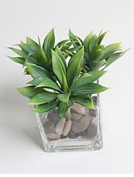 Simulation Tropical Plants Immortal Grass Artificial Plants