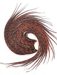 Box Tresses Tresses Twist Extensions de cheveux 22inc Kanekalon 12/1 Brin 80g gramme Braids Hair