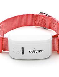 Chat / Chien Colliers Etanche / piles comprises / GPS Blanc Plastique