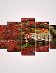 Canvas Print Five Panels Ready to Hang,Horizontal