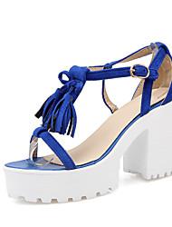 Women's Shoes Chunky Heel Heels / Platform / Gladiator / Open Toe Sandals Party & Evening / Dress / Casual