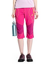 Femme Pantalon/Surpantalon / Mi-long / BasCamping / Randonnée / Pêche / Sport de détente / Cyclisme/Vélo / Ski de fond / Hors piste /