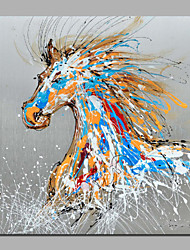 Nice Animal Paintings Horse Running Nice Home Deco Artwork on Canvas with Stretcher