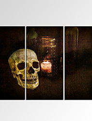 VISUAL STAR®Framed Wall Art for Home Decoration Skull Picture Giclee Print on Canvas Ready to Hang