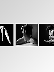 VISUAL STAR®Contemporary Naked Woman Canvas Wall Art for Bar Decoration Ready to Hang