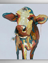 Hand Painted Oil Painting Animal Colorful Cow with Stretched Frame