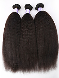 3Pcs/Lot Brazilian Kinky Straight Virgin Hair Weft Weaving Virgin Brazilian kinky straight Hair Extension No Shedding