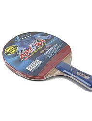 4 étoiles Raquettes de tennis Tennis de table Raquettes Ping Pang Caoutchouc Long Manche Boutons Intérieur Extérieur