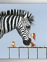 pintura a óleo pássaros animais pintados à mão beijar a zebra com quadro esticado arts® 7 parede