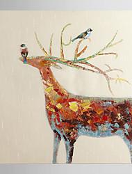 cervos alegres óleo pintados à mão animais pintura com moldura esticada