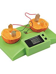 Science Experiment Technology Popular Diy Toys By Science And Technology Fruits