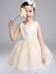 Ball Gown Knee-length Flower Girl Dress-Organza / Tulle Sleeveless