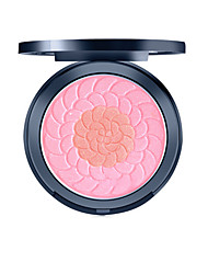 Natural Skin Blush Brighten Complexion Makeup
