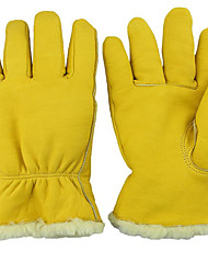 Natural Gas Filling Stations Cryogenic Freezing Glove Gloves
