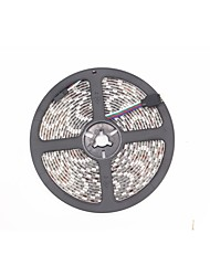 RGB Waterproof LED Flexible Strip 5M 300x5050 SMD DC12V IP65+24Keys IR Controller