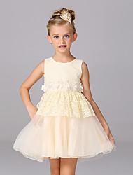 A-line Knee-length Flower Girl Dress - Lace / Organza / Satin Sleeveless Jewel with
