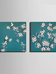 E-HOME® Stretched Canvas Art Flower Bird Decoration Painting  Set of 2