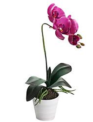 Soie / Polyuréthane Orchidées Fleurs artificielles