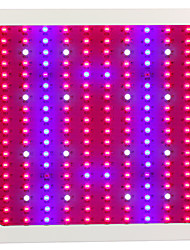 LED Grow Lights 1800W Full Spectrum Double chip Plant Lamps Best For Growing and Flowering Hydroponics
