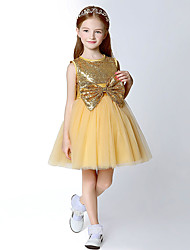 A-line Knee-length Flower Girl Dress - Tulle / Sequined Sleeveless Jewel with