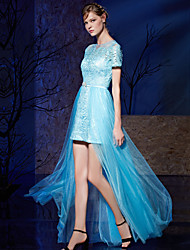 Sheath / Column Jewel Neck Floor Length Lace Prom Dress with Ribbon