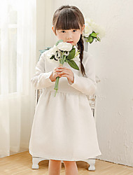 Girl's Cotton Spring/Autumn Cute Pure White Embroidery Long Sleeve Princess Dress