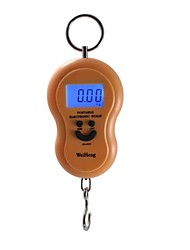 Mini Electronic Scales Courier Grocery Stall Supply Weighing Scales Spring Home