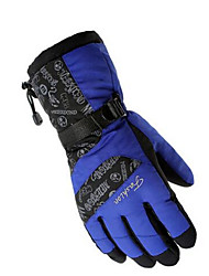 Warm Winter Fashion Windproof Gloves Ski Gloves Thickening Mountaineering Motorcycle Gloves