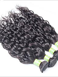 Eurasian Water Wave Virgin Hair 4 Bundles 8-30 Inch Eurasian Wet And Wavy Human Hair, Eurasian Natural Wave Hair
