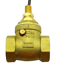 Copper Water Flow Switch G3/4 Diameter Brass Water Flow Sensor