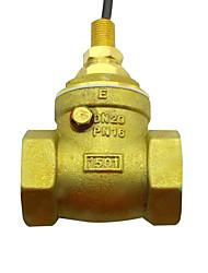 chave de fluxo de água de cobre g3 / diâmetro 4 sensor de fluxo de água de bronze