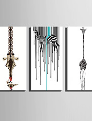 E-HOME® Stretched Canvas Art Abstract Animal Decoration Painting  Set Of 3