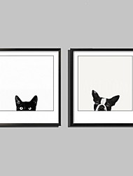 E-HOME® Framed Canvas Art, Cats And Dogs Framed Canvas Print One Pcs