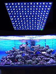 10w 225led 112blue + 113white lumières d'aquarium conduit eu (220v)