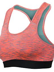 Professional Crop Top Padded Yoga Bra Sky Blue Sujetador Deportivo Fitness Gym Vest Women Running Breathable Sports Bra