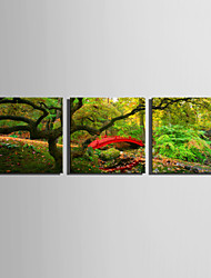 E-HOME® Stretched Canvas Art A Small Bridge in The Woods Decoration Painting  Set of 3