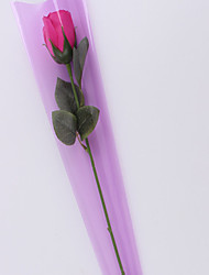 seul sac arenaceous grind une seule rose sac le brouillard épaissi rose sacs