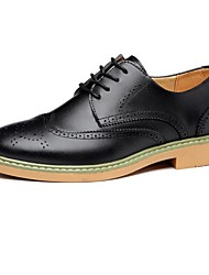 Men's Oxfords Spring / Summer / Fall / Winter Closed Toe Leather Outdoor Chunky Heel Lace-up Others