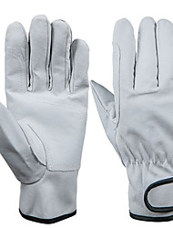 Gatto Wear Protection Pigskin Gloves Driver Working Gloves