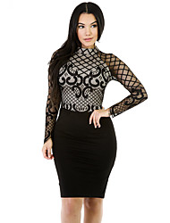 Women's Long Sleeves Mesh Romances Dress