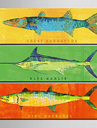 E-HOME® Stretched Canvas Art Bright Fish Decoration Painting  Set of 3