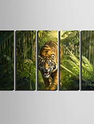 Tier Leinwand drucken Fünf Panele Fertig zum Aufhängen , Vertikal
