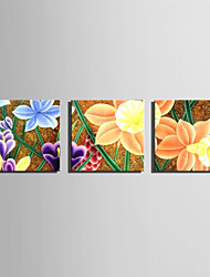 E-HOME® Stretched Canvas Art Colorful Flowers Decoration Painting  Set of 3