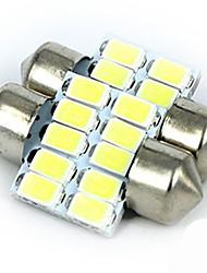 nova cúpula carro claro dupla ponta de luz do carro -5630-10led lâmpada de leitura super brilhante