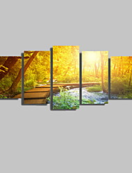 5 Panels Sunrise Forest and the Wooden Ladder Landscape Picture Print Modern Wall Art on Canvas Unframed