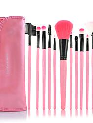 12 Blush Brush / Eyeshadow Brush / Brow Brush / Eyeliner Brush Others Professional / Travel / Full Coverage Plastic Others