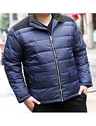 Masculino Padrão Casaco Capa,Simples Sólido Casual-Poliéster Penas de Pato Branco Manga Longa Colarinho Chinês Azul / Verde